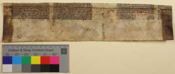Rückseite des Doppelblatts mit Farbkeil