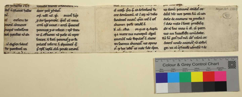 256-3: Rückseite des Doppelblatts mit Farbkeil